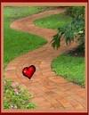 Heart_path_5